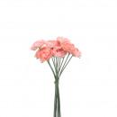 Ranunculus verbond